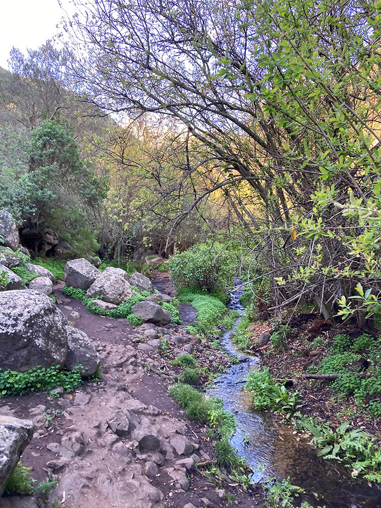 gay hiking on gran canaria with exclusive trips