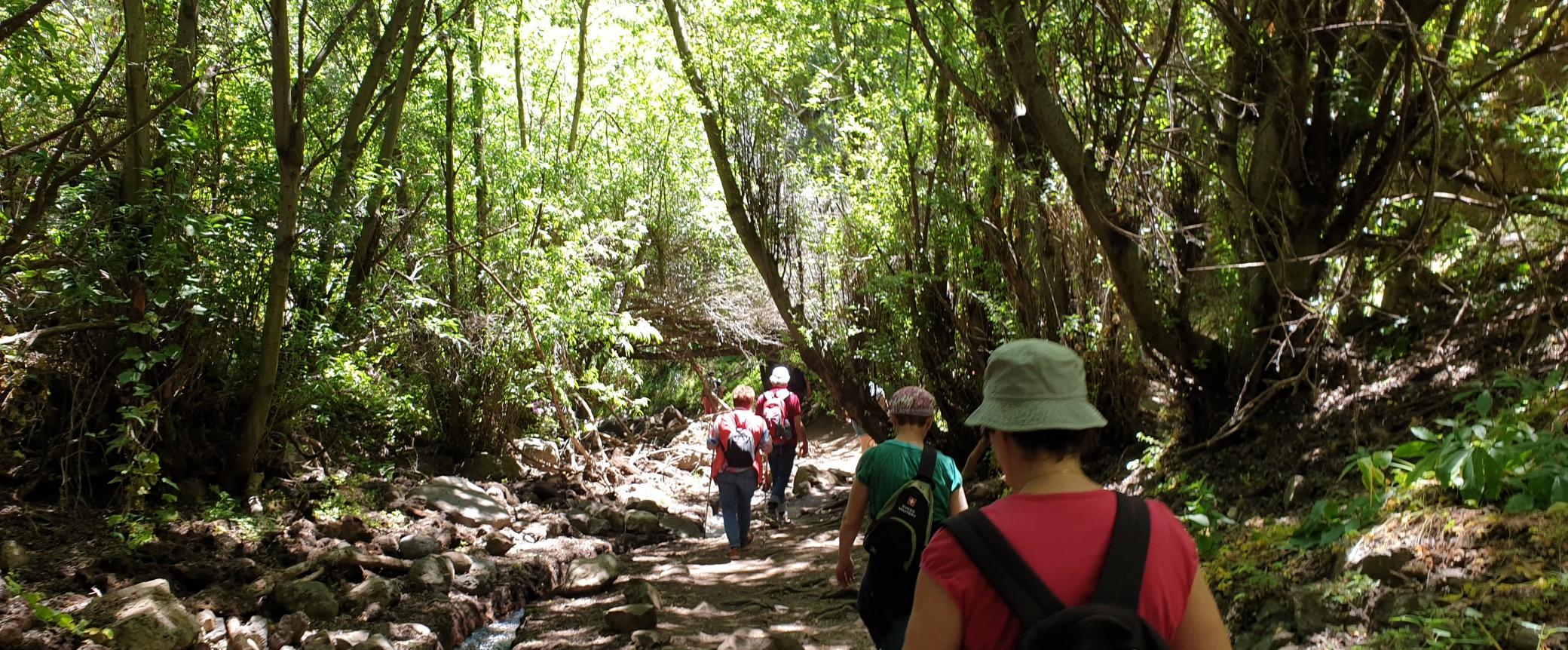 Hiking Kestrel Canyon Hikingworld Gran Canaria