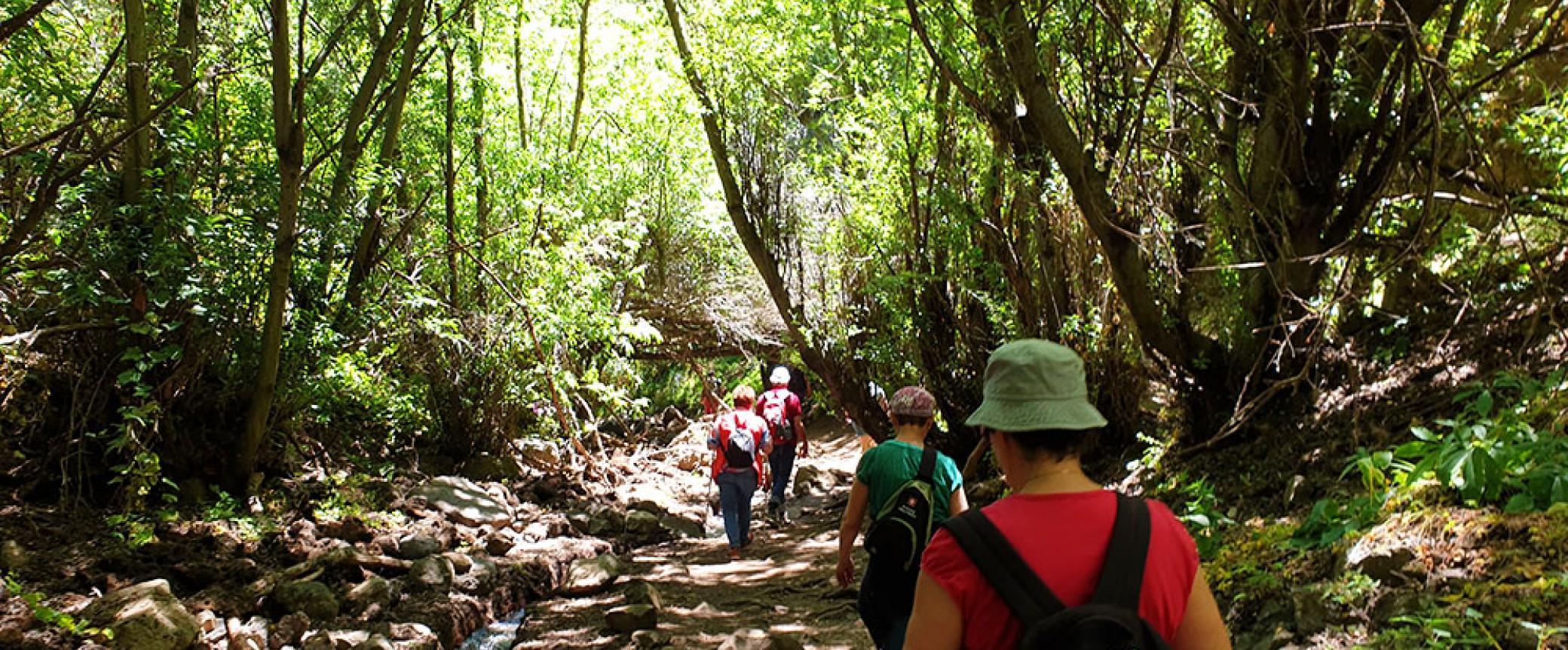 hiking on gran canaria to the kestrel canyon