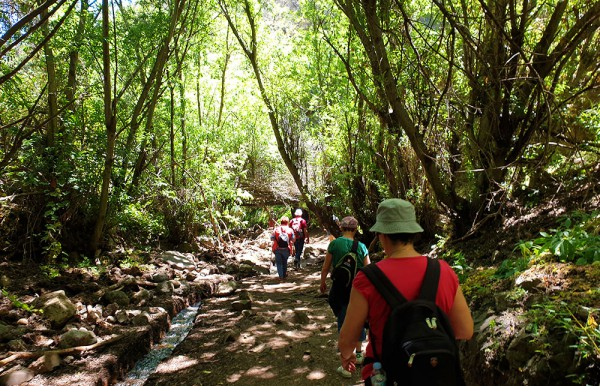 hiking on gran canaria to the kestrel canyon